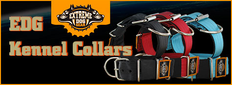 EDG kennel collars