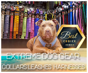 Extreme Dog Gear | Collars | Leashes | Sport Harness