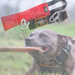 pitbull toy by extreme dog gear
