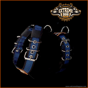 Sport harness 4cm stripe navy blue