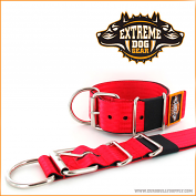 Basic kennel collar red