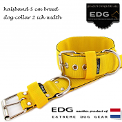 EDG collar 5cm - 2inch yellow
