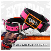 Puncher black hot pink Collar 5cm - 2 inch