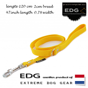 EDG lead 2cm - 0.78 inch - 120cm yellow