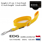 EDG lead 2.5cm - 1 inch - 120cm yellow