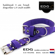 EDG collar 4cm - 1.6 inch purple
