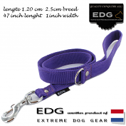EDG lead 2.5cm - 1 inch - 120cm purple