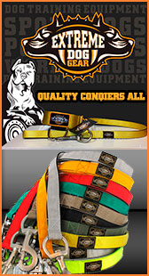 Extreme Dog Gear - collars and leashes